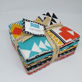 Four Corners - Fat Quarter Bundle from Riley Blake