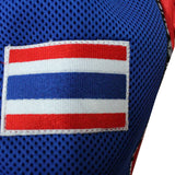 "InFightStyle ""Royal Thai"" Retro - Red/Blue - InFightStyle Muay Thai Gear, Retro Shorts"