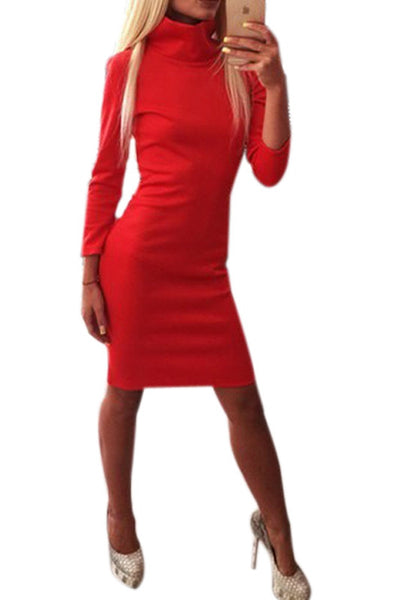 Expressive and Elegant Turtle Neck Dress
