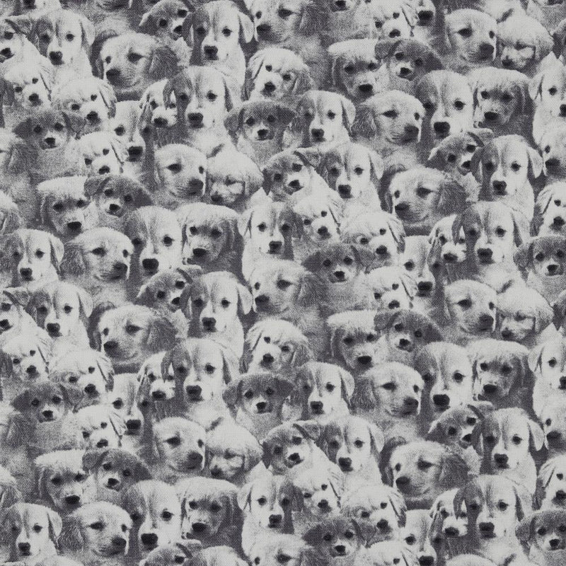 100% Cotton Canvas - Dog - The Fabric Counter