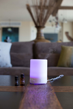Bliss Ultrasonic Diffuser (300ml)