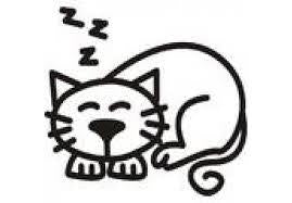 My Family Car Stickers Cat Sleeping - Jouets LOL Toys