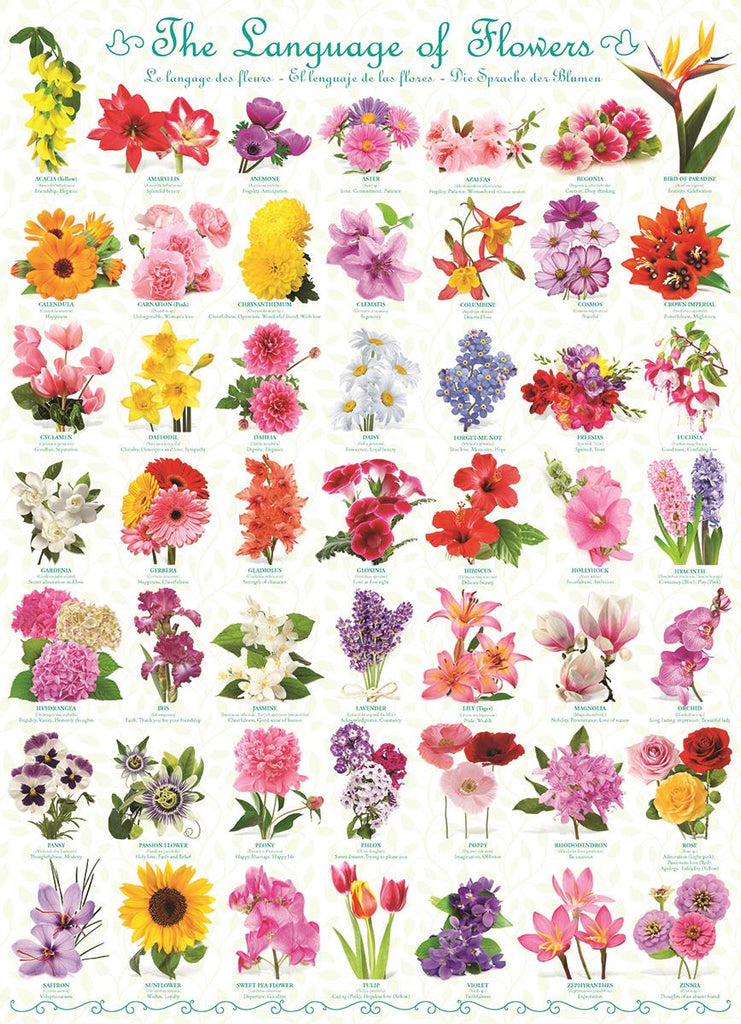 Puzzle The Language of Flowers - Jouets LOL Toys