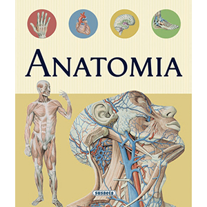 Greek - Anatomy Atlas - Jouets LOL Toys