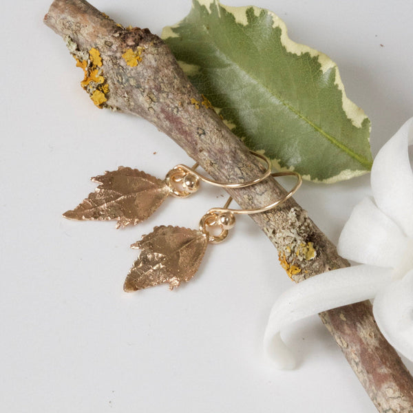 leaf earrings 9ct gold