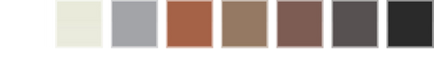DermMatch Colour Swatch