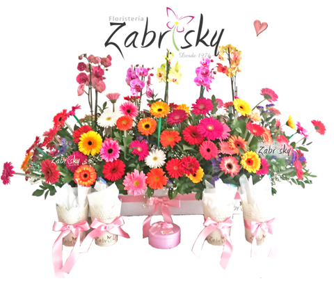 Orchid and gerbera - Florist in Pereira