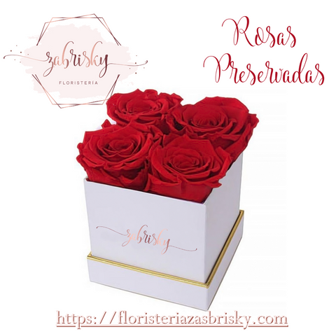 Beauty and Beast Red Rose - Florist in Pereira
