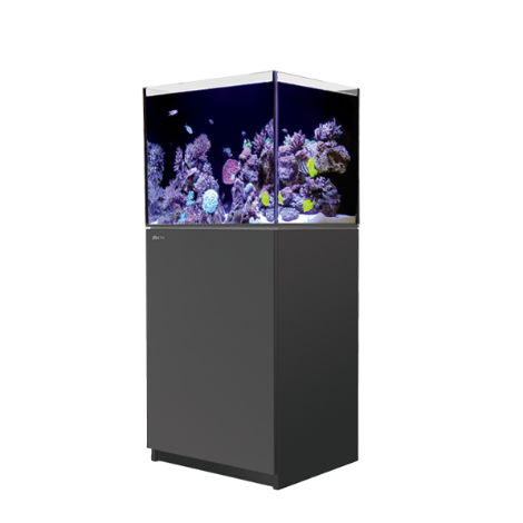 Red Sea Reefer 170 - Black | Deep Blue Aquatics