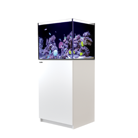 Red Sea Reefer 170 - White | Deep Blue Aquatics