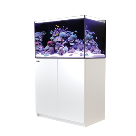 Red Sea Reefer 250 - White | Deep Blue Aquatics
