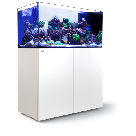 Red Sea Peninsular P500 Deluxe - White | Deep Blue Aquatics