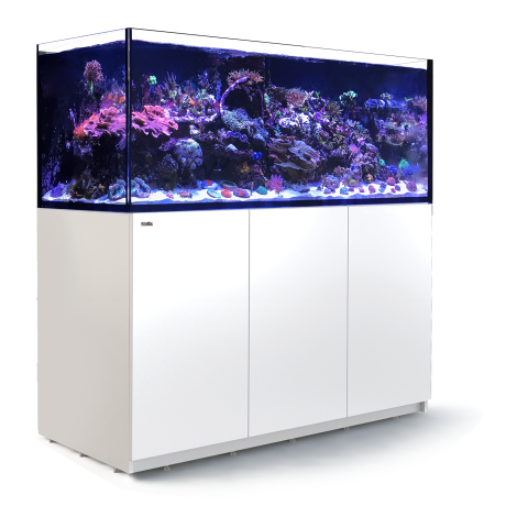 Red Sea Reefer 625 XXL - White | Deep Blue Aquatics