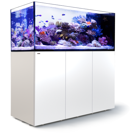 Red Sea Peninsular P650 Deluxe - White | Deep Blue Aquatics