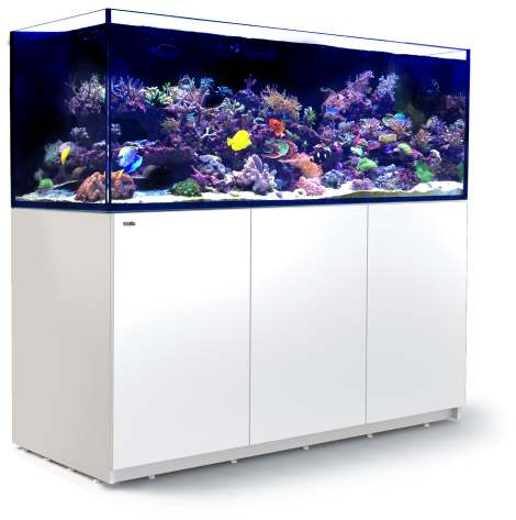 Red Sea Reefer 750 XXL - White | Deep Blue Aquatics