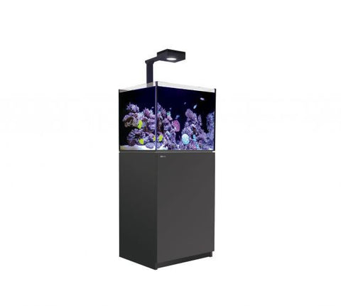 Red Sea Reefer 170 Deluxe - Black