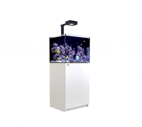 Red Sea Reefer 170 Deluxe - White