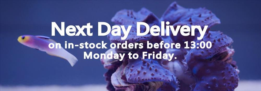 Next Day Delivery  on in-stock orders before 13:00 Monday to Friday | Deep Blue Aquatics