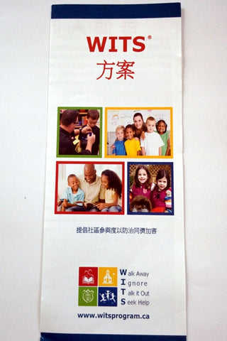Pamphlet WITS LEADS Program (Mandarin)