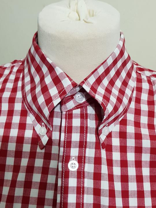 Charles Caine Red Gingham Shirt