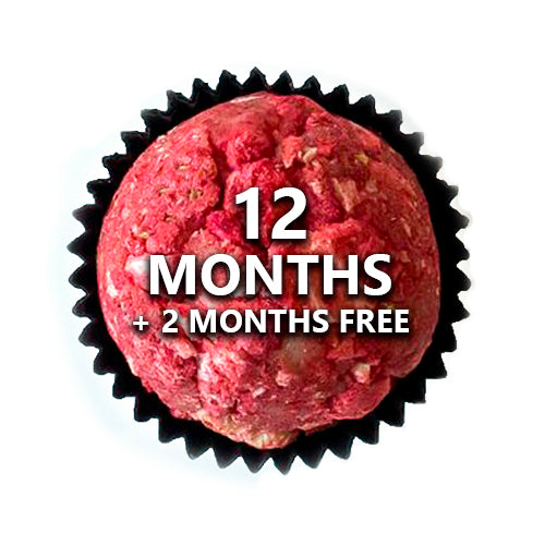 12 MONTH TINYB CHOCOLATE SUBSCRIPTION - SHIPPING INCLUDED freeshipping - tinyB chocolate