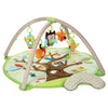 Skip Hop Treetop Friends Baby Activity Gym