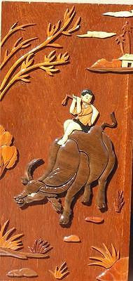 Vietnames Boy Riding Buffalo