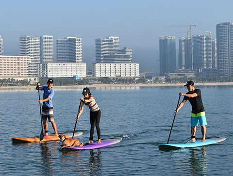 Stand Up Paddle Boards in calm water