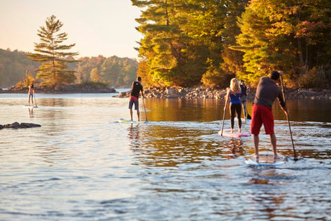 Stand up paddle boarders on a lake