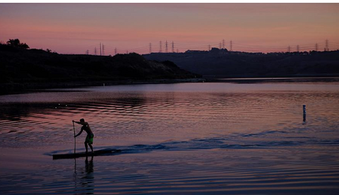 Stand up paddle boarder at sunset
