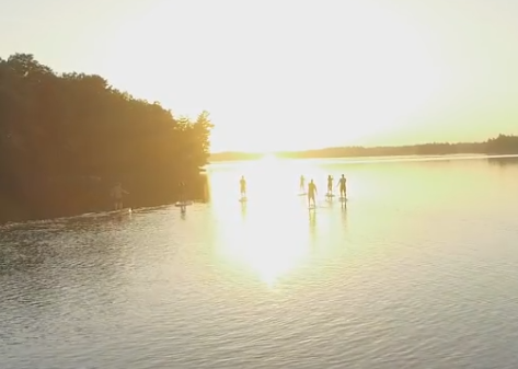 arge group of stand up paddle boarders at sunset