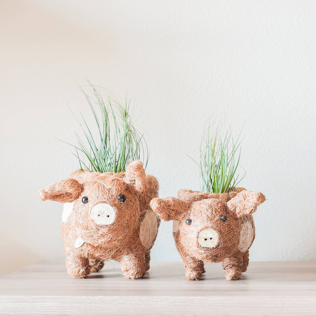 Handmade Animal Planter - Pig
