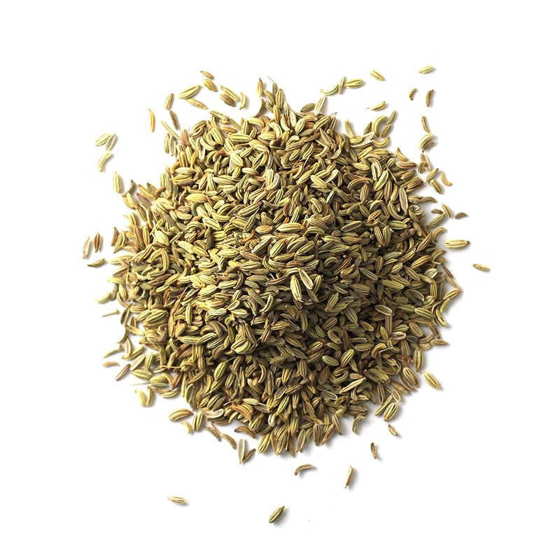 Fennel Seed | Glass Jar A-Z Spiceology 1.46 OZ
