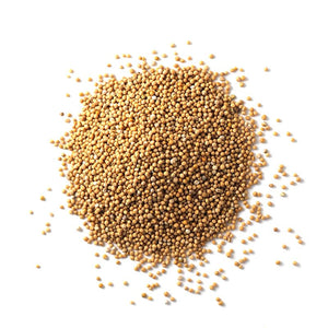 Mustard Seed, Yellow SPICES Spiceology