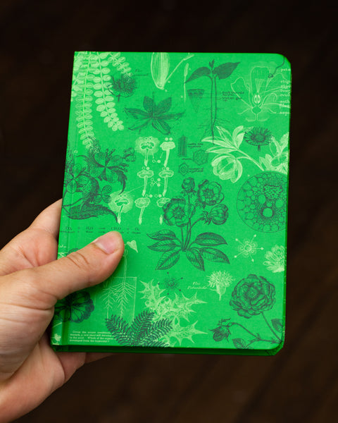 Case study mini hardcover botany recycled notebook pictured in hand by Cognitive Surplus