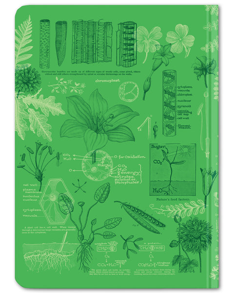 Back cover of Botany mini hardcover dot grid notebook by Cognitive Surplus, leafy green, 100% recycled paper