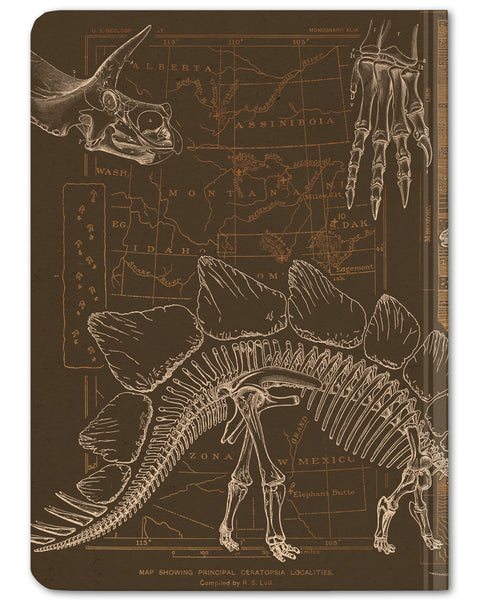 Back cover of Dinosaur mini hardcover dot grid notebook by Cognitive Surplus, brown and tan, 100% recycled paper