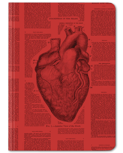 Anatomical Heart mini hardcover dot grid notebook by Cognitive Surplus, blood red, 100% recycled paper