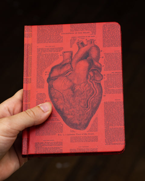 Case study mini hardcover anatomical heart recycled notebook pictured in hand by Cognitive Surplus
