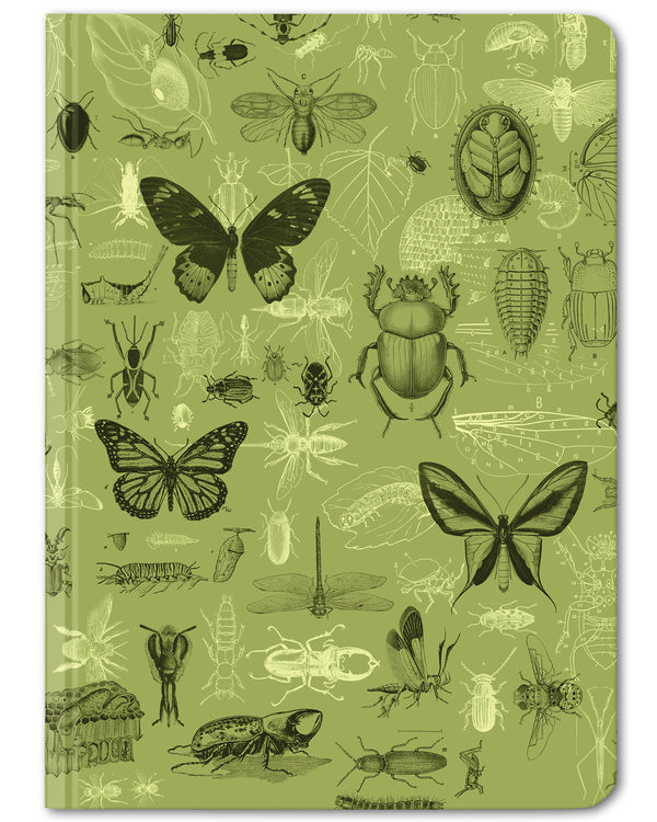 Insects mini hardcover dot grid journal by Cognitive Surplus, leafy green, 100% recycled paper
