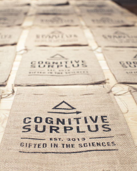 You Radiate! Gift Pack - Cognitive Surplus - 4