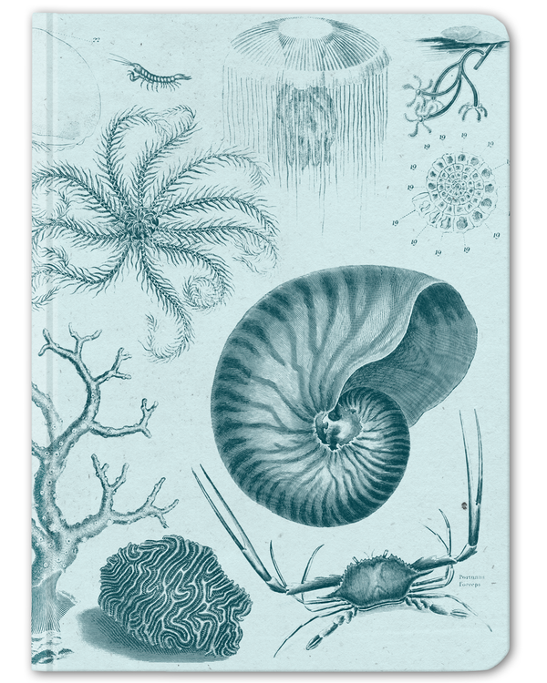 Shallow Sea Hardcover Journal - Large - Cognitive Surplus - 1