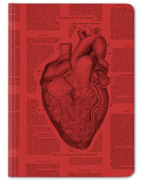 My Heart Beats For You Gift Pack - Cognitive Surplus - 4