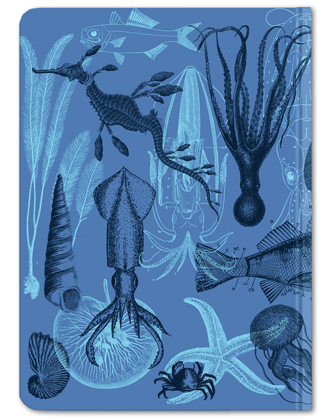 Sea Animals, Marine Biology hardcover notebook by Cognitive Surplus