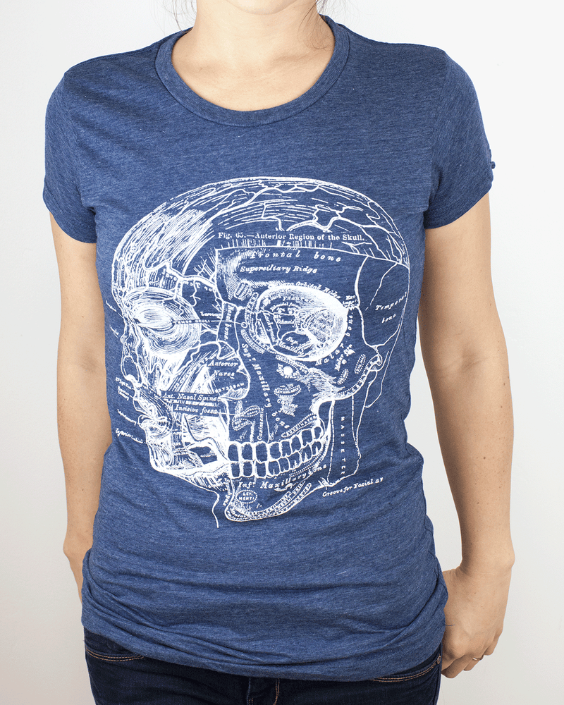 Skull & Head Anatomy Tee Shirt - Cognitive Surplus - 1