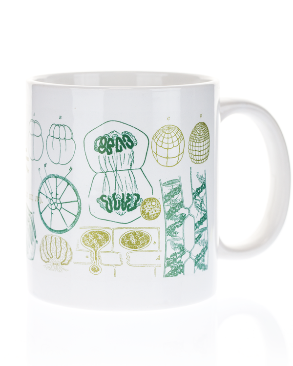 Cell Biology 20 oz Mega Mug - Cognitive Surplus