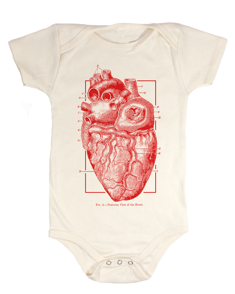 Anatomical Heart Baby Bodysuit - Cognitive Surplus - 1