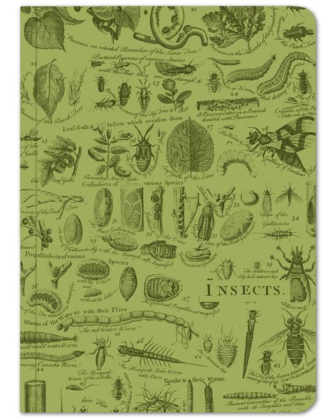 Insect Softcover: Stickered