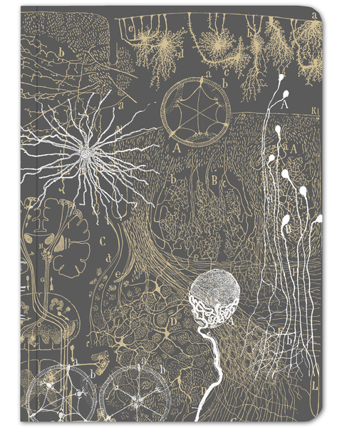 Neurons Softcover: Stickered