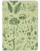 Plants & Fungi Softcover: Stickered